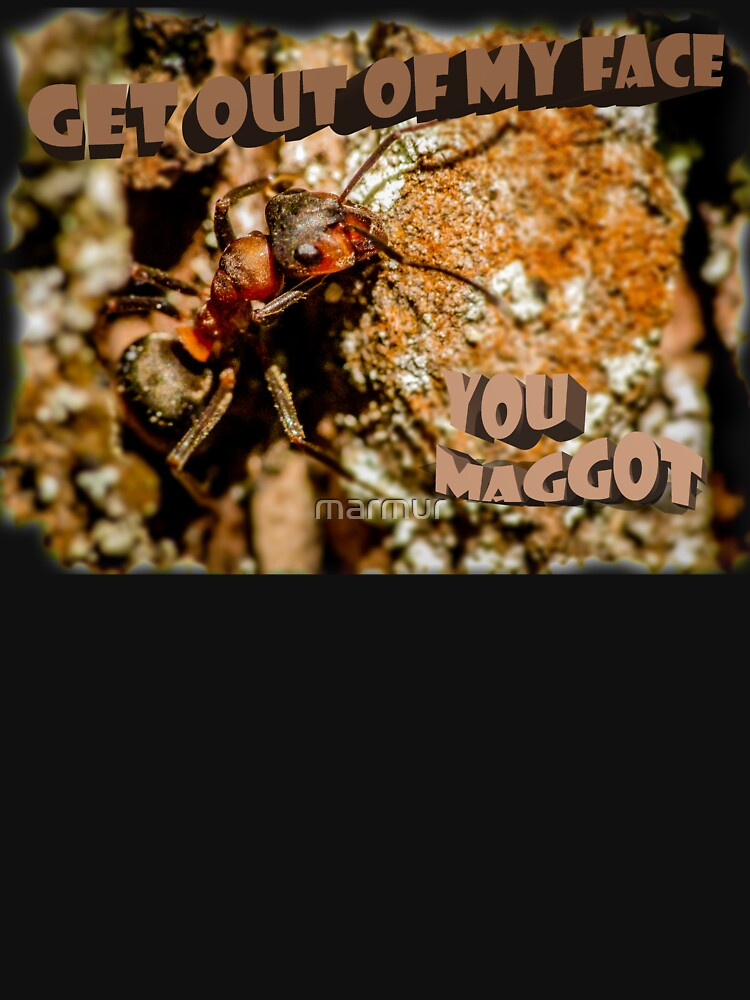 Get out of my face, you maggot by marmur