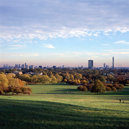 View over London from Primrose Hill by Peter Stone