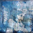 Paladin of Fortitude by David North