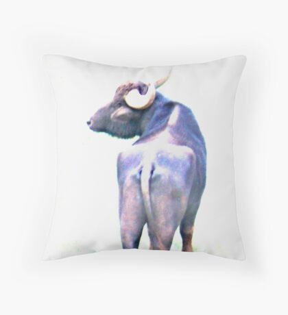 Water buffalo in high key Throw Pillow