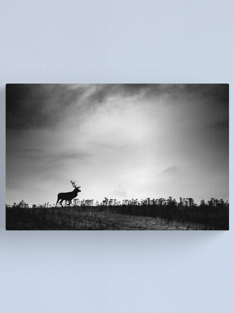 Alternate view of The Stag Canvas Print
