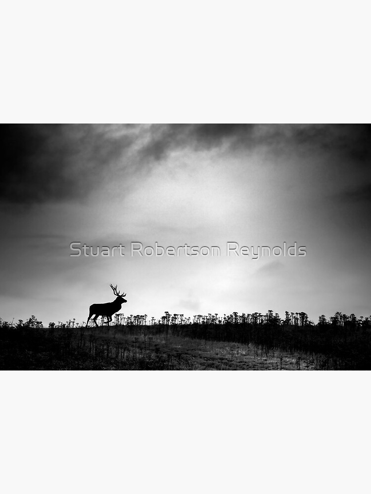 The Stag by Sparky2000