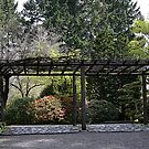 Arbor in the Gardens by Chappy