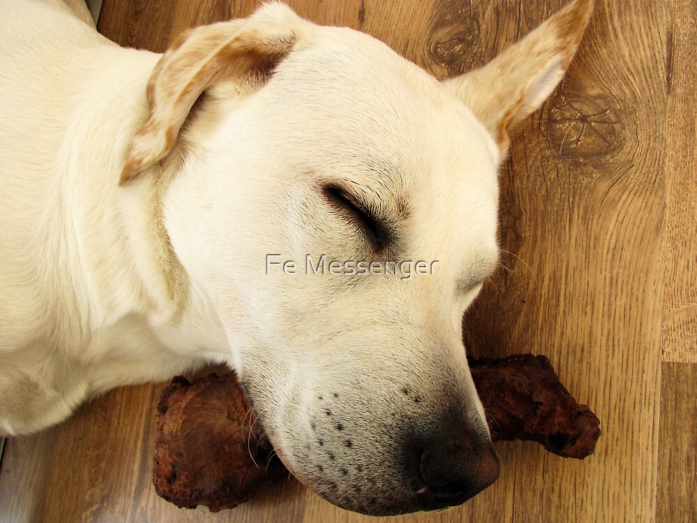Sleeping like a Log by Fe Messenger