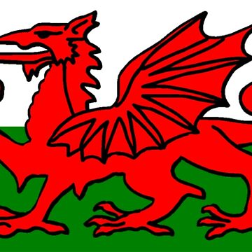 Welsh Flag by sweetsixty
