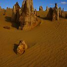The Pinnacles by blueeyesjus