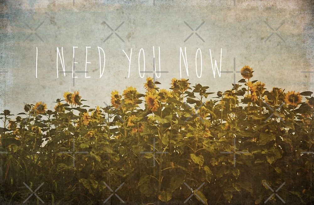 I Need You Now by Denise Abé