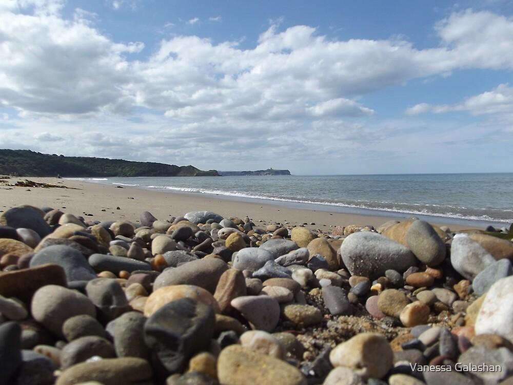 Cayton Bay - rocks by Vanessa Galashan