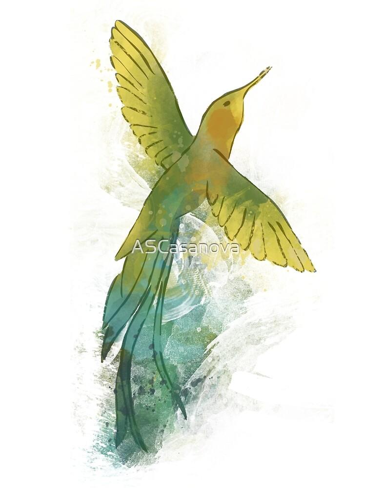 The hummingbird by ASCasanova