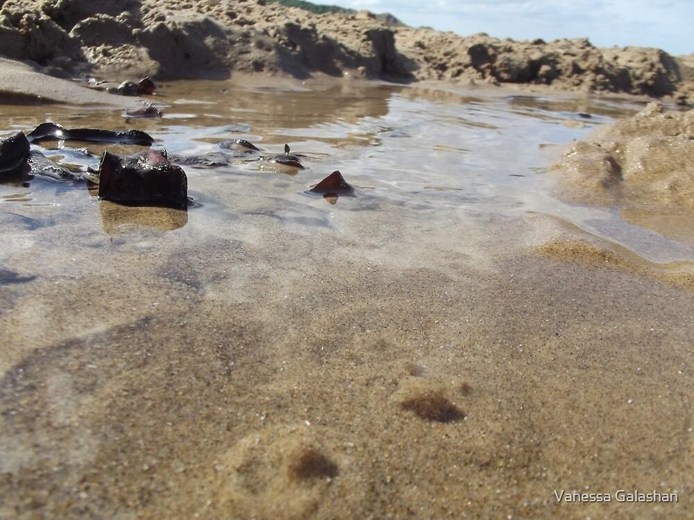 Cayton Bay - fresh water pool by Vanessa Galashan