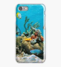 Colorful tropical marine life underwater sea iPhone Case/Skin