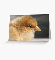 Sleepily chick  Greeting Card