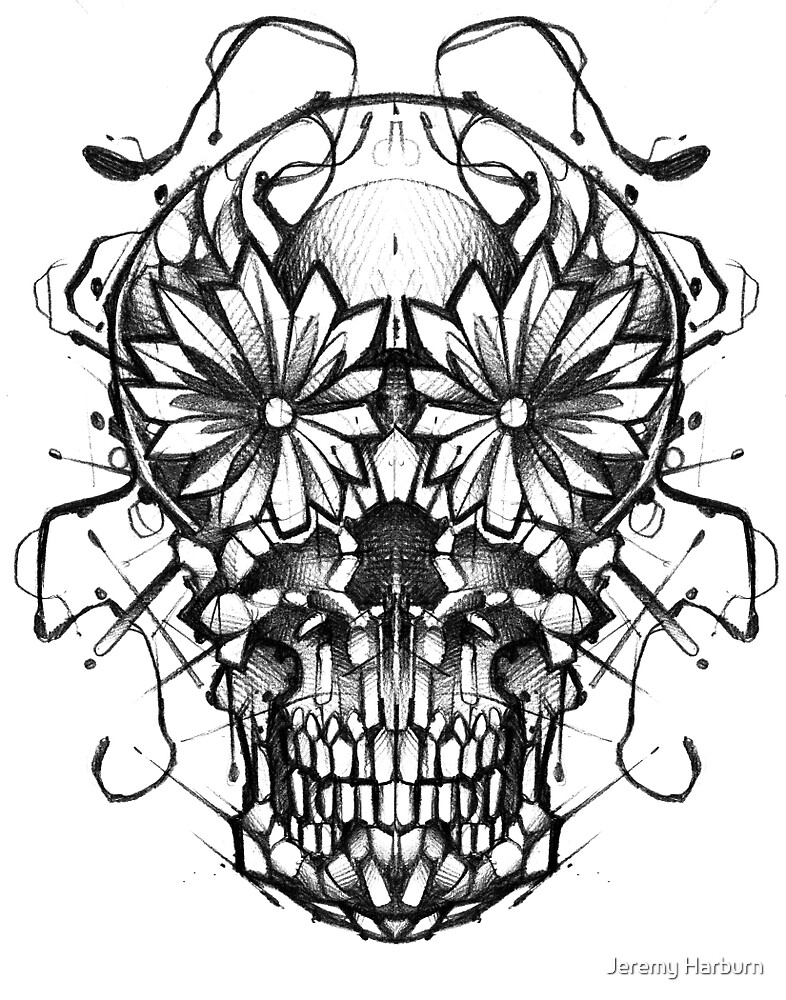 Mirror skull by Jeremy Harburn