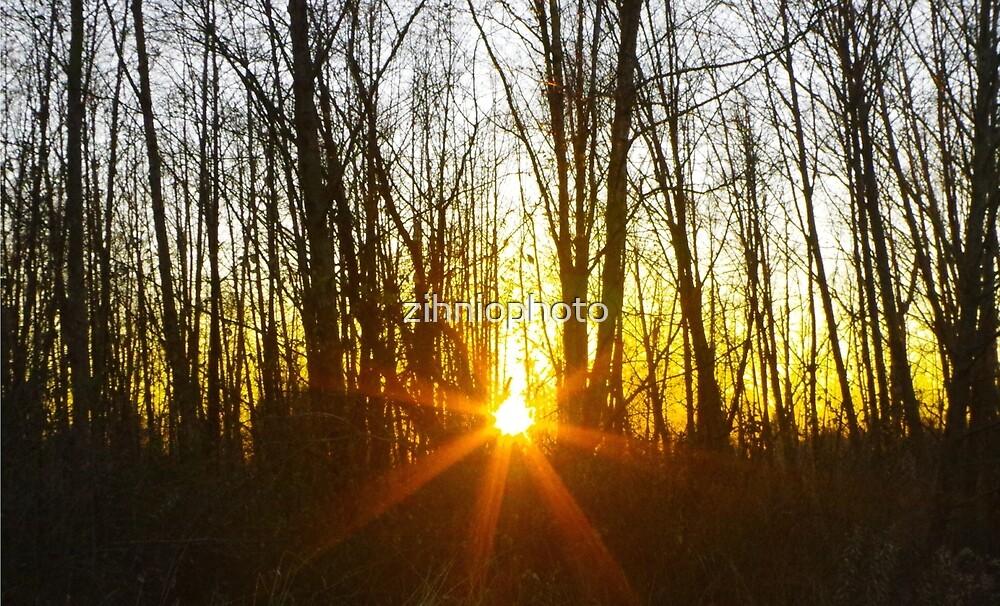 Sunset by zihniophoto