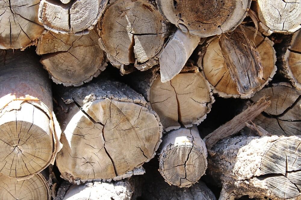Firewood by TheDonutKitten