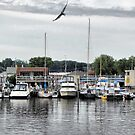 South Haven Marina by Monnie Ryan