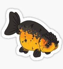 Fancy Goldfish - Lionhead Sticker