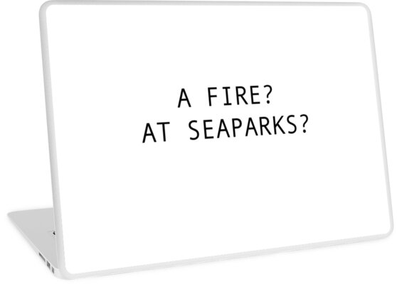A fire? At seaparks? The IT Crowd by AATdesign
