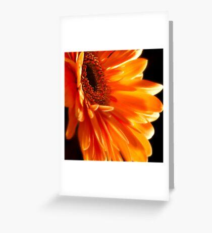 Orange Explosion Greeting Card