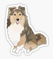Sheltie Dog Sticker