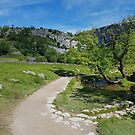 Approach to Malham by Kat Simmons