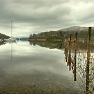 Coniston Fence by Jamie  Green