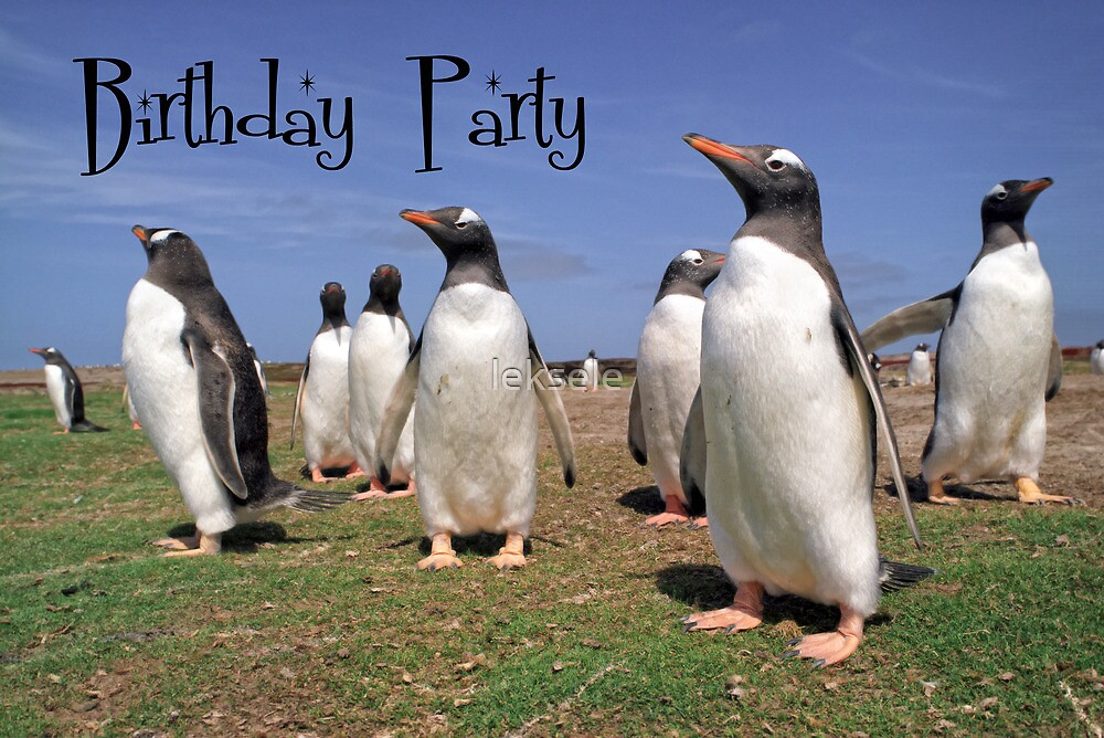 Birthday party by leksele