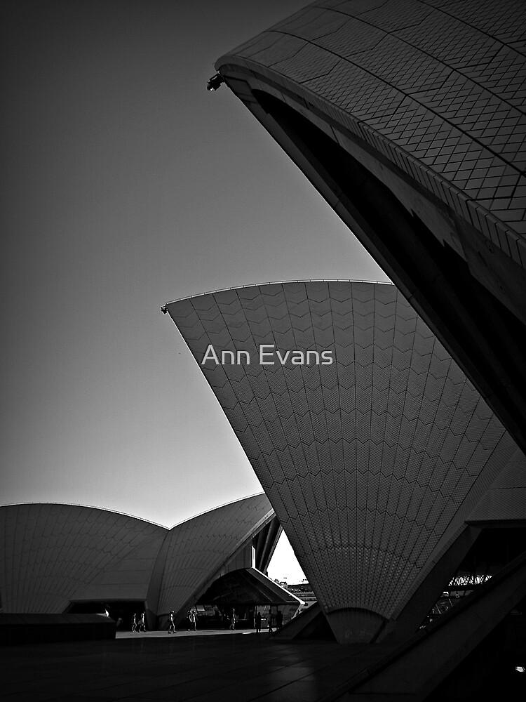 Shadow On The Sun by Ann Evans