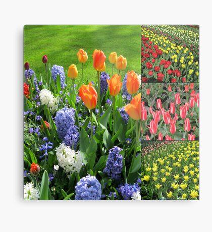 Flamme der Farbe - Keukenhof Tulip Collage Metallbild