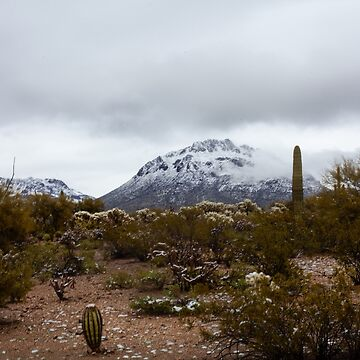 Tucson Mountain snow by designfly