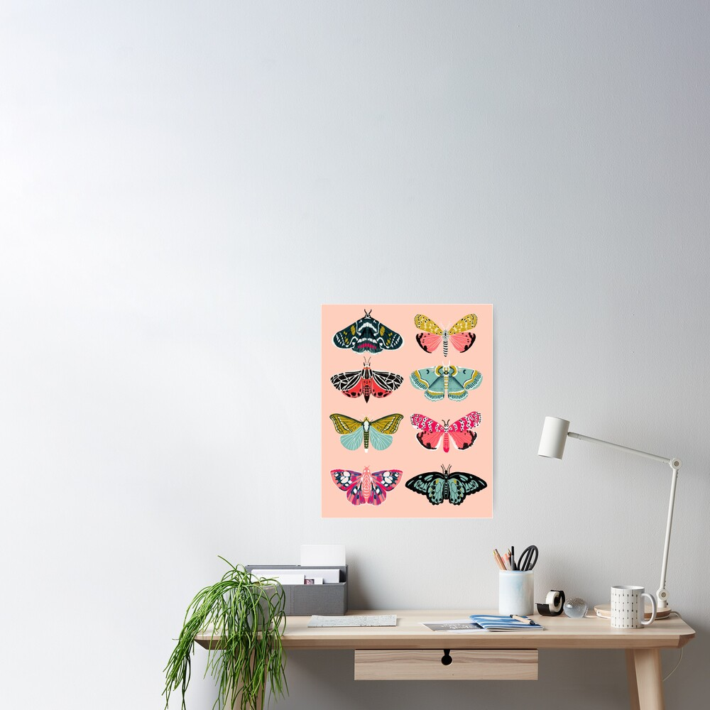 Lepidoptery No. 1 by Andrea Lauren  Poster