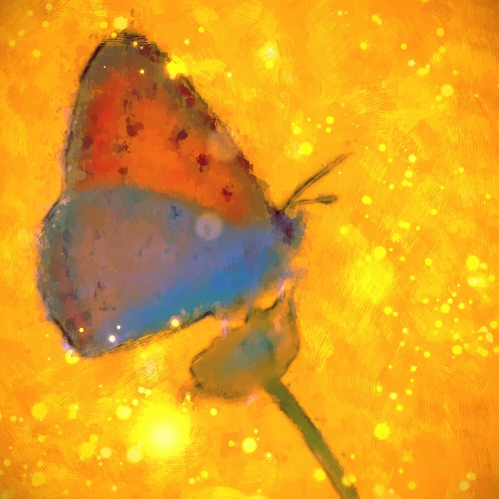 Butterfly on Gold by Anthony Ross