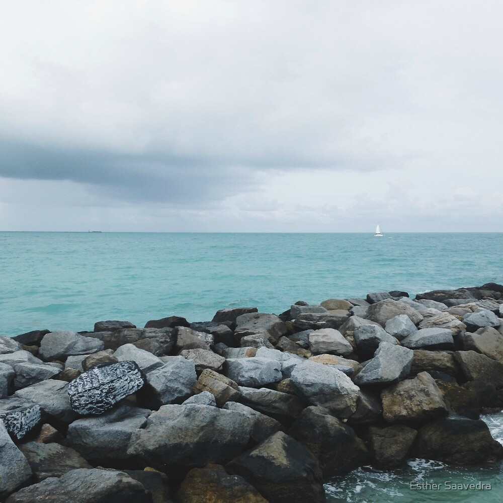 Miami Beach Pier by Esther Saavedra