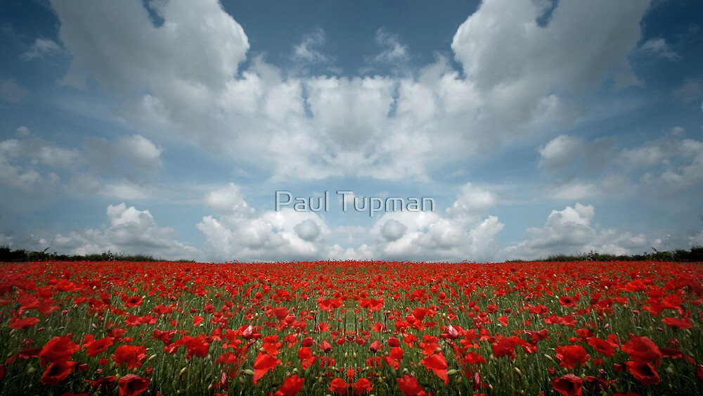 Nowhere Land III by Paul Tupman