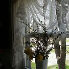 Daffodils in my window by linmarie