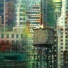 Behind Every Window by Elizabeth Bravo