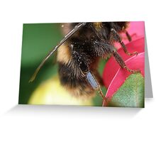 Isn't this just the bees knees.... Greeting Card