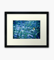OnePhotoPerDay Series: 111 by L. Framed Print
