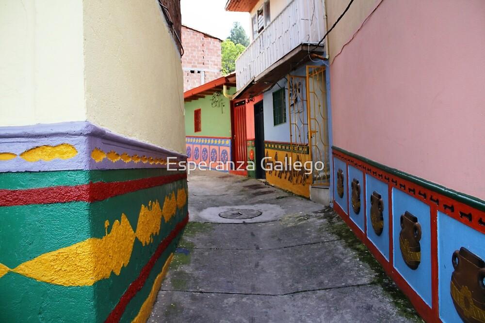 Color in the Street by Esperanza Gallego