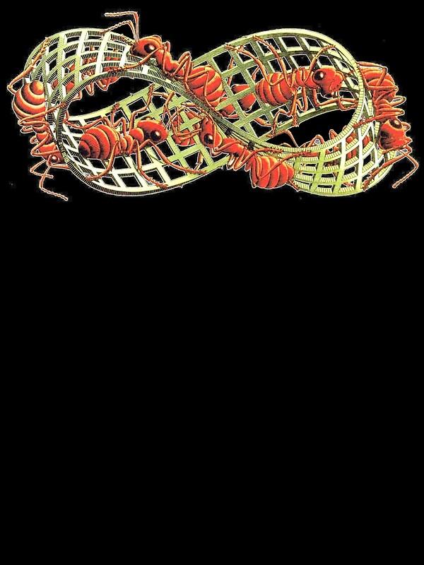 Ants on the Mobius Strip (MC Escher)   Art Print