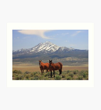 Where The Mustangs Roam Art Print