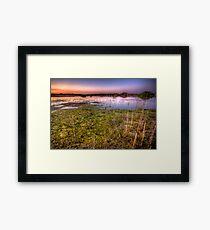 Swamp Sunset Framed Print