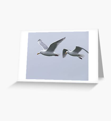 Gulls in a Storm (5) Greeting Card