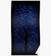 The Star Trail Experience - Silent Night Poster