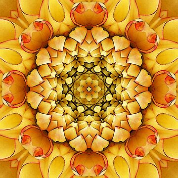 Mandala 01 by MiekeKupers