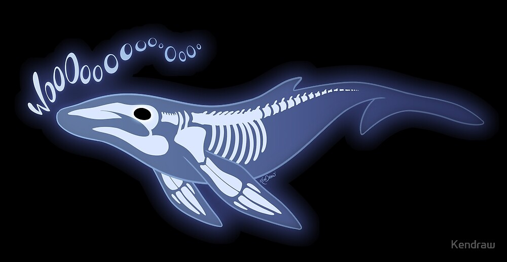 Ghost Whale by Kendraw