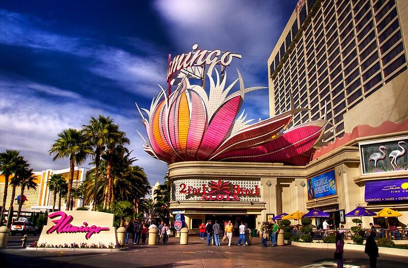 фламинго казино конго