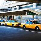 Taxi cabs at JFK by Hugster62