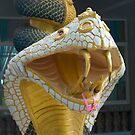 Temple Cobra by johnrf