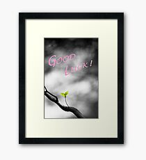 Good Luck Leaves Framed Print